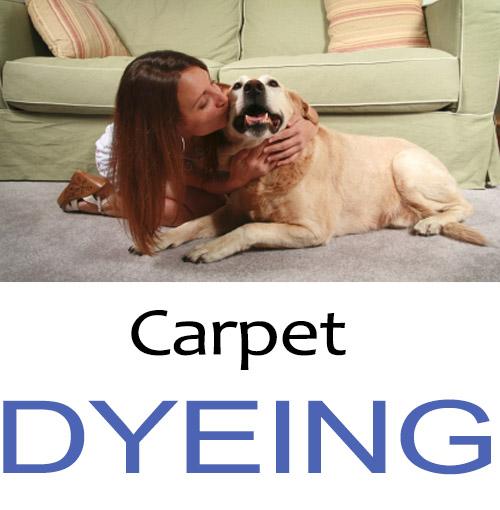 carpet-dyeing-service san diego